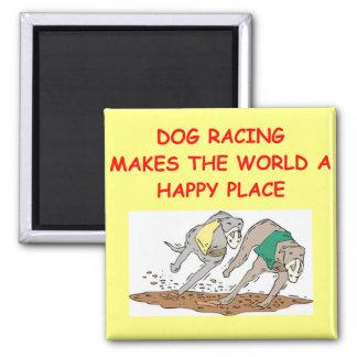 dog racing magnet