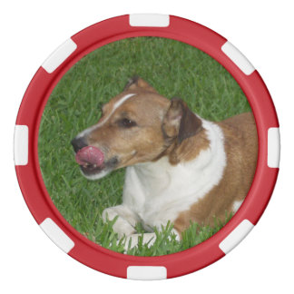 Dog red edge poker chip
