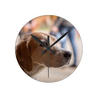 dog round clock