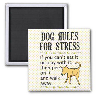 Dog Rules for Stress Magnet