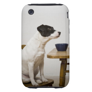 Dog sitting on a chair in front of a bowl on the tough iPhone 3 case