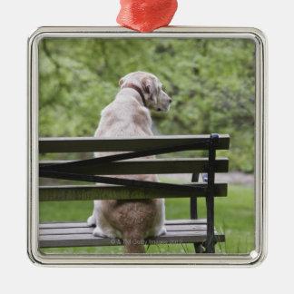 Dog sitting on park bench metal ornament