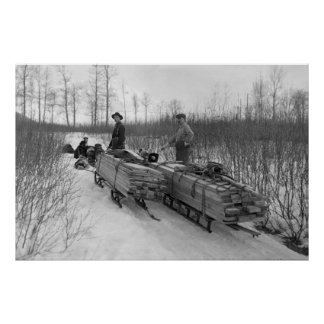 Dog Sled Delivery: 1900 Poster