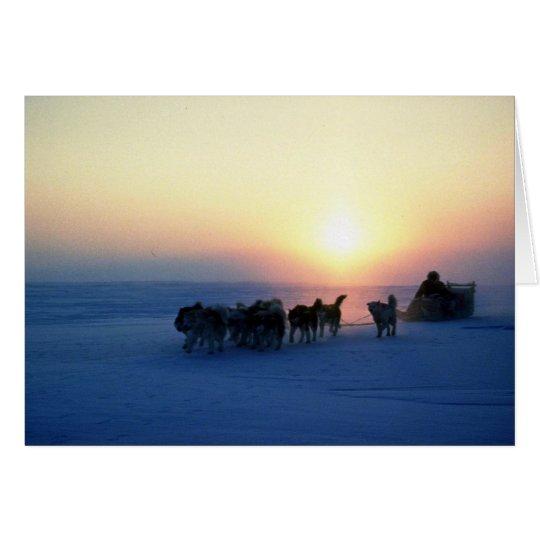 Dog sled travel at 45 degrees Celsius, Baffin Isla Card