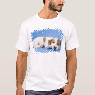 Dog sleeping T-Shirt