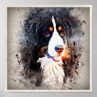 Dog, St. Bernard - Saint Berne ARD Dog Poster