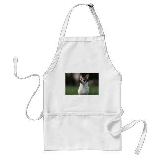 dog standard apron