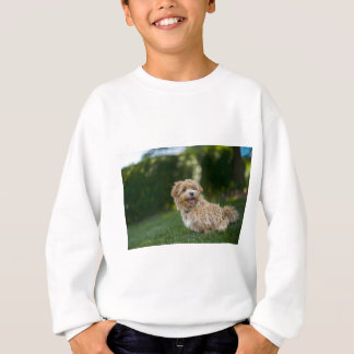 Dog Summer Out Pet Animal Fun Happy Vacation Sweatshirt