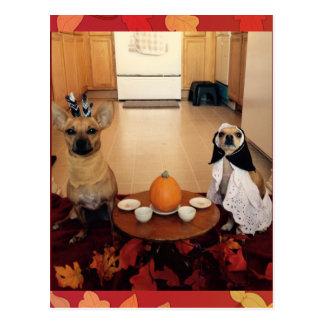 Dog Thanksgiving Postcard