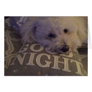 """Dog Tired"" Notecard"