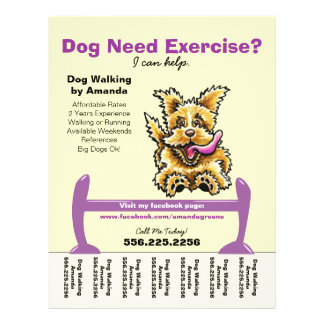 Dog walking promotional flyers dog walking promotional for Dog walking flyer template free