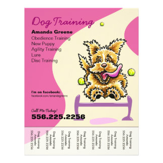 Dog Training Trainer Active Terrier Ad Tear Sheet Personalized Flyer