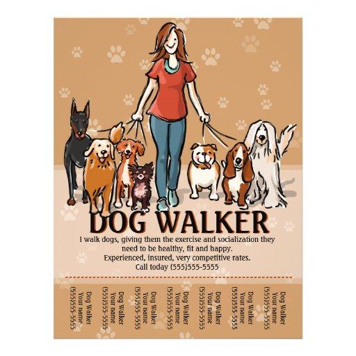 dog walking promotional flyers  dog walking promotional