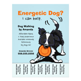 Dog Walker Walking Personalized Tear Sheet Full Color Flyer