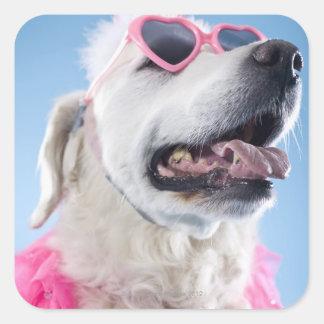 Dog wearing heart shaped classes and tu-tu square sticker