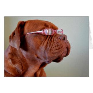 Dog Wearing Pink Eyeglasses Card