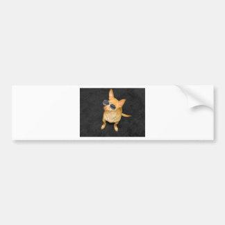 Dog wearing sunglasses bumper sticker