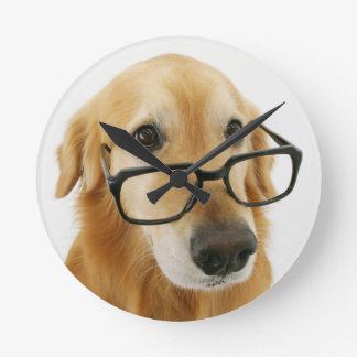 Dog wearing  tie and glasses sitting on chair clock