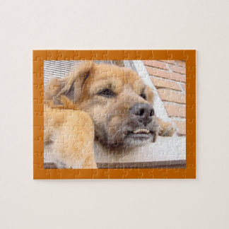 Dog with Buck Teeth Puzzle