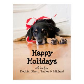 Dog with Christmas ribbons Postcard