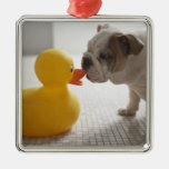 Dog with plastic duck metal ornament