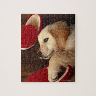 Dog with shoes lying on wooden floor, elevated jigsaw puzzle