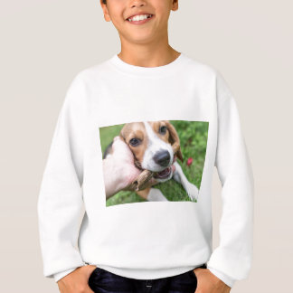 Dog with Stick Sweatshirt