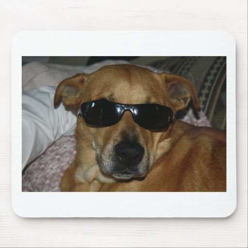 Dog with sunglasses mousepad