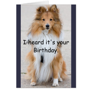 Dog Years Happy Birthday Card