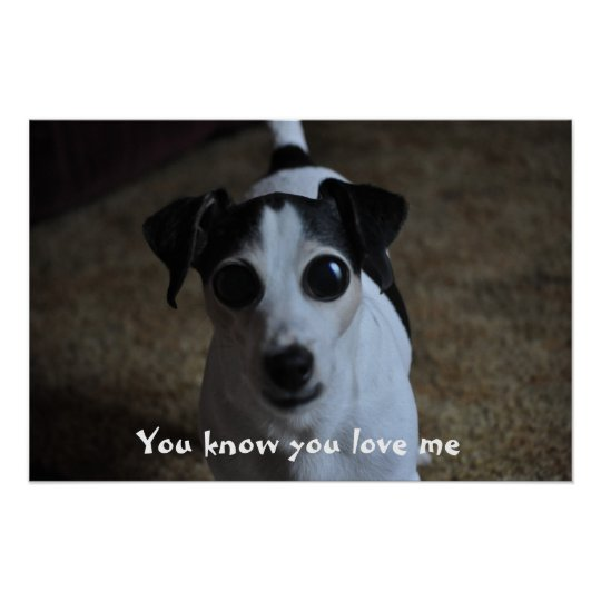 dog, You know you love me. Poster