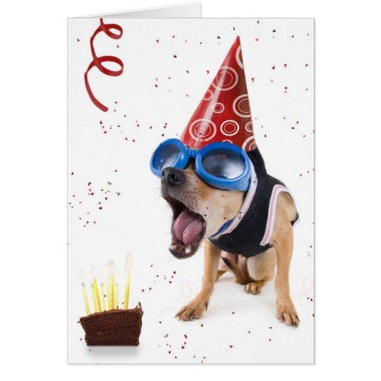 dogcake card
