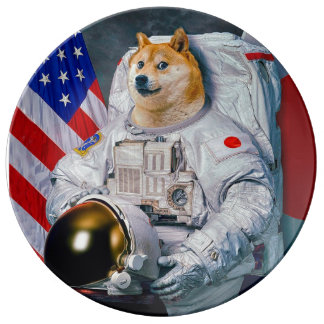 Doge astronaut-doge-shibe-doge dog-cute doge plate