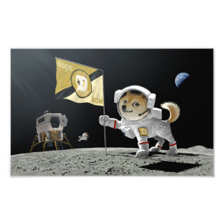 Dogecoin to the Moon Photo Print