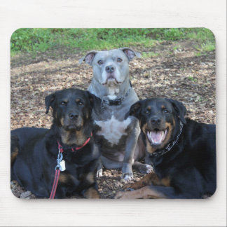 Doggie Family Picture Mouse Pad