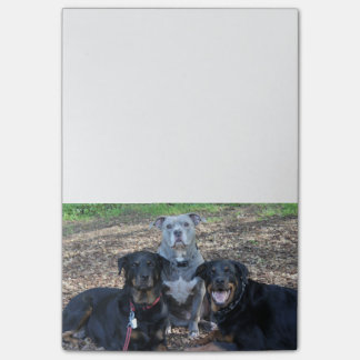 Doggie Family Picture Notes
