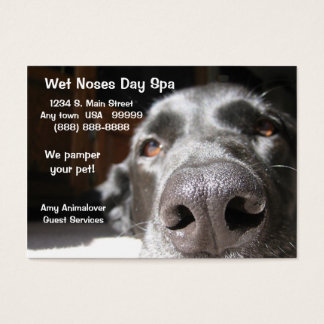 Doggie Spa Business And Appointment Card