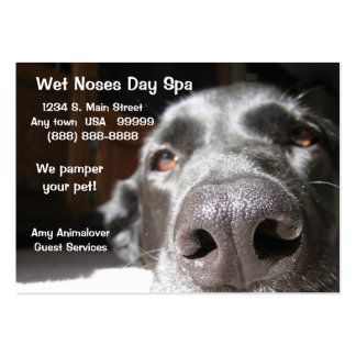Doggie Spa Business And Appointment Card Large Business Card