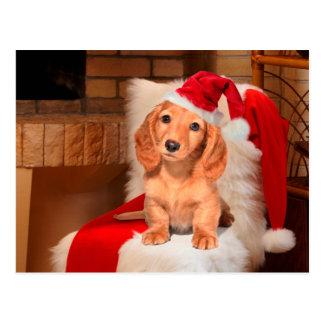 Doggy Christmas Postcard