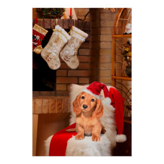 Doggy Christmas Poster