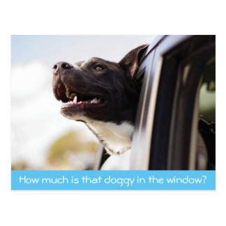 Doggy in the Window Postcard