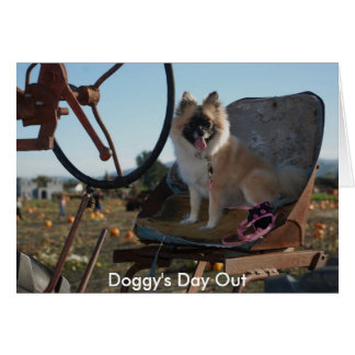 Doggy's Day Out Greeting Card