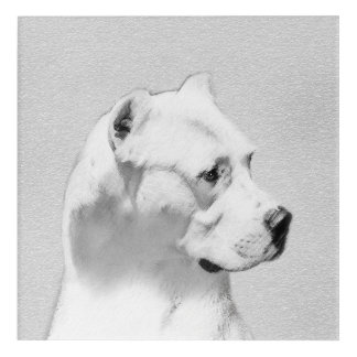 Dogo Argentino Acrylic Print
