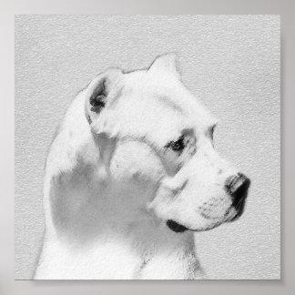 Dogo Argentino Poster
