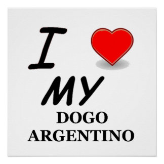 dogo love perfect poster