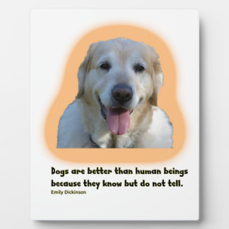 Dogs are better than human beings plaque