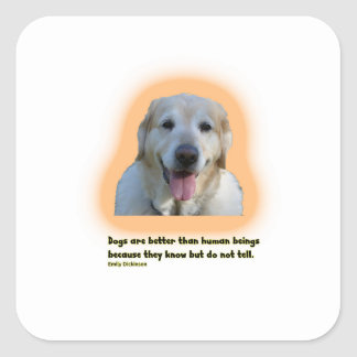 Dogs are better than human beings square sticker