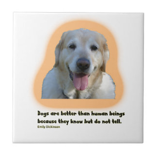 Dogs are better than human beings tile