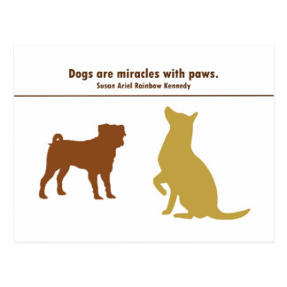 Dogs Are Miracles Postcard