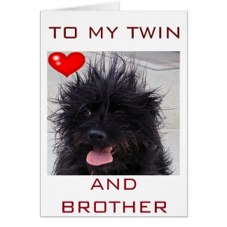 DOG'S BAD HAIR DAY HAPPY BIRTHDAY TWIN BROTHER GREETING CARD