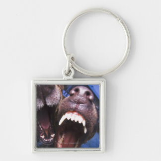 Dogs barking Silver-Colored square keychain